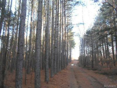 000 BRECKS LANE, Farmville, VA 23901 - Photo 1
