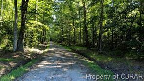 LOT C CREEK LANE LANE, COBBS CREEK, VA 23035 - Photo 1
