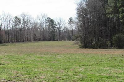 12619 LEW JONES RD, DEWITT, VA 23840 - Photo 2