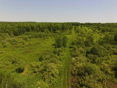 61.89 ACRES CLUBHOUSE ROAD, Ringle, WI 54471 - Photo 2