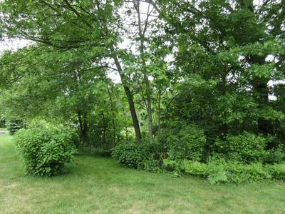 LOT 01 SLEEPY HOLLOW ROAD, Junction City, WI 54443 - Photo 2