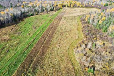 +/-68.38 ACRES WATER DRIVE, Medford, WI 54451 - Photo 2