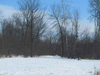 0 CLOVER ROAD, Junction City, WI 54443 - Photo 1