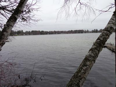 3002 E LAKE HELEN DR, Rosholt, WI 54473 - Photo 1