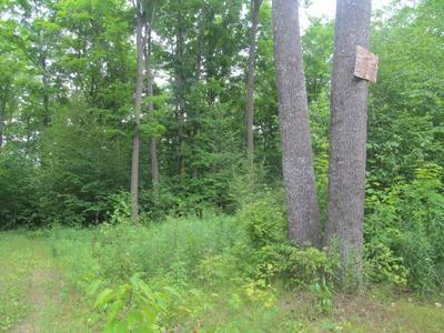 LOT #6 COUNTY ROAD Q, PICKEREL, WI 54465 - Photo 2