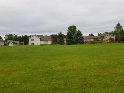 LOT 4 JOE'S COURT, Junction City, WI 54443 - Photo 1