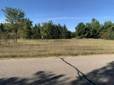 00 RIVER DRIVE, Plover, WI 54467 - Photo 1