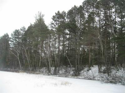 100 ACRES COUNTY ROAD C, FENCE, WI 54121 - Photo 2