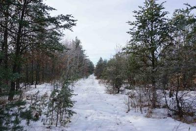 1 COUNTY ROAD P, Plainfield, WI 54966 - Photo 2