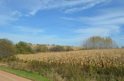 40 ACRES BUTTERNUT ROAD, Stratford, WI 54484 - Photo 2