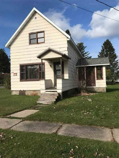 320 W ILLINOIS ST, Butternut, WI 54514 - Photo 2