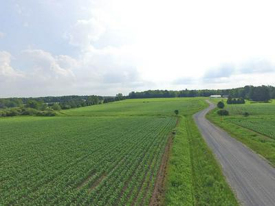LOT 1 KOHL ROAD, Athens, WI 54411 - Photo 1