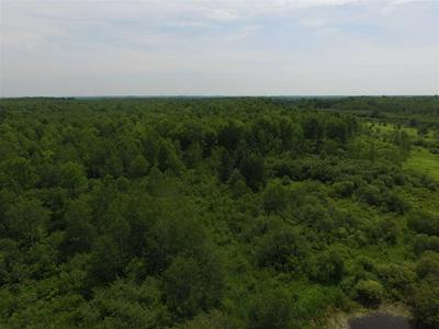 61.89 ACRES CLUBHOUSE ROAD, Ringle, WI 54471 - Photo 1