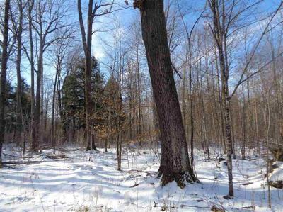 +/-160 ACRES TIMBER DRIVE, CATAWBA, WI 54515 - Photo 2