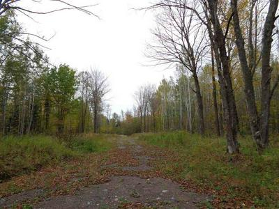 +/-160 ACRES TIMBER DRIVE, CATAWBA, WI 54515 - Photo 1