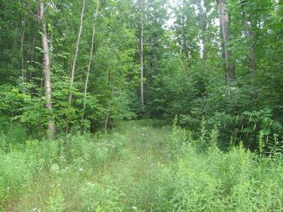 LOT #6 COUNTY ROAD Q, PICKEREL, WI 54465 - Photo 1