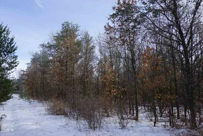 1 COUNTY ROAD P, Plainfield, WI 54966 - Photo 1
