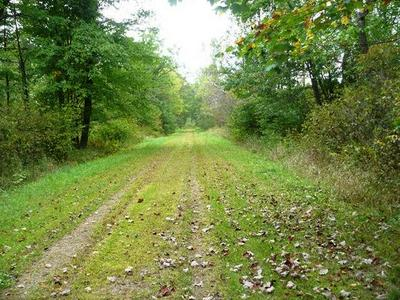 SEC 18 WILDERNESS AVENUE, Willard, WI 54493 - Photo 1