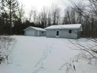10752 W FOUR MILE DRIVE, Tripoli, WI 54564 - Photo 1