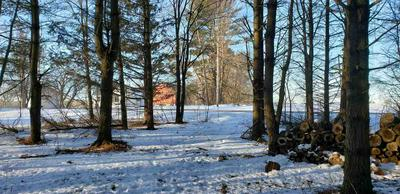 33 ACRES COUNTY ROAD V, Pittsville, WI 54466 - Photo 2