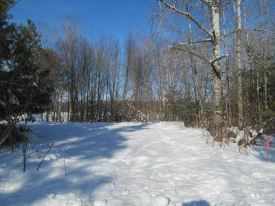 .29 ACRES MOOSE LAKE ROAD, Antigo, WI 54409 - Photo 2