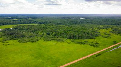 118.47 ACRES AMELIA ROAD, Pittsville, WI 54466 - Photo 2