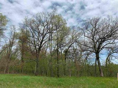 LOT 2 COUNTY ROAD V, Amherst, WI 54406 - Photo 1