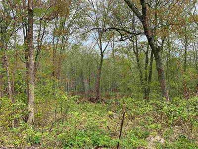 LOT 1 COUNTY ROAD V, Amherst, WI 54406 - Photo 1