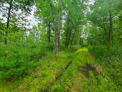0 COUNTY ROAD C, Stevens Point, WI 54481 - Photo 2