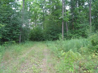 LOT #5 COUNTY ROAD Q, PICKEREL, WI 54465 - Photo 1