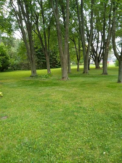 425 CASE AVE, Junction City, WI 54443 - Photo 2
