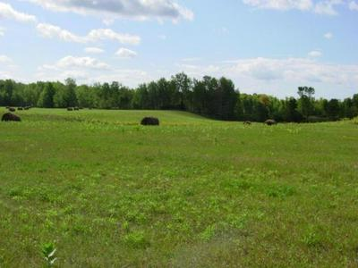 N7101 STATE HIGHWAY 55, LILY, WI 54491 - Photo 2