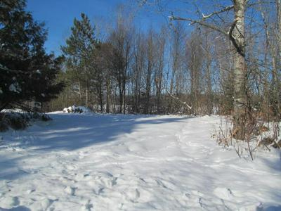 .29 ACRES MOOSE LAKE ROAD, Antigo, WI 54409 - Photo 1