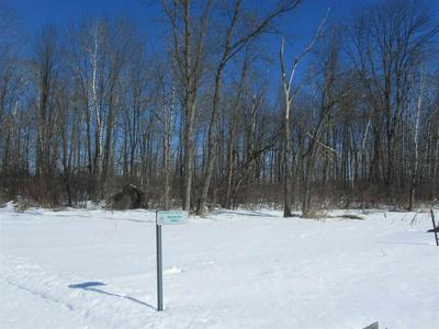 0 CLOVER ROAD, Junction City, WI 54443 - Photo 2