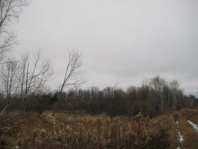 072 CLUBHOUSE ROAD, RINGLE, WI 54471 - Photo 2