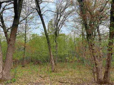 LOT 1 COUNTY ROAD V, Amherst, WI 54406 - Photo 2