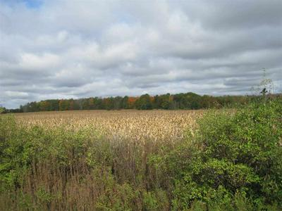 ON EAU CLAIRE RIVER ROAD, Aniwa, WI 54408 - Photo 2