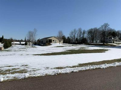 LOT 3 HOME STREET, Wittenberg, WI 54499 - Photo 1