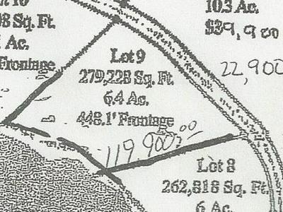 LOT 9 CRAWFORD LAKE ROAD, Pickerel, WI 54465 - Photo 1
