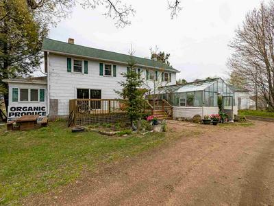 W11848 MCEACHERN RD, Deerbrook, WI 54424 - Photo 1