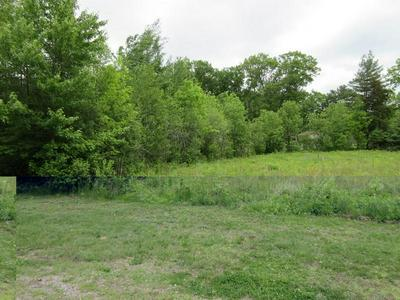 LOT 01 SLEEPY HOLLOW ROAD, Junction City, WI 54443 - Photo 1