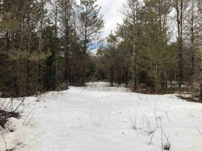 LOT #6 PINE RIVER ROAD, Merrill, WI 54452 - Photo 2