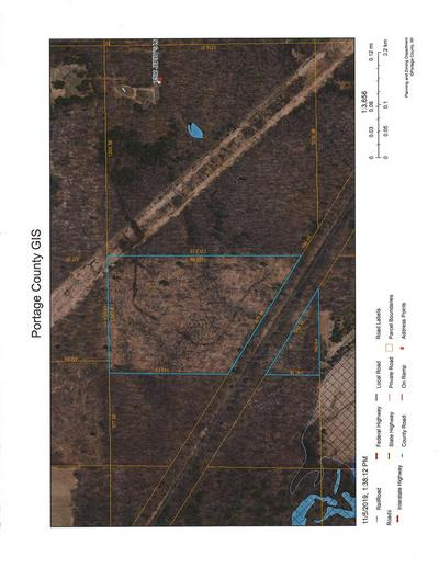 LOT 1 JERRY'S LANE, Junction City, WI 54443 - Photo 1