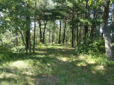 1301 WOODDUCK LN, Plover, WI 54467 - Photo 2