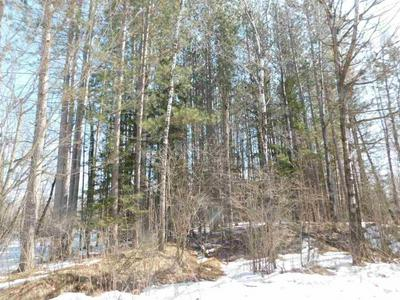40 ACRES FORKS ROAD, Merrill, WI 54452 - Photo 2