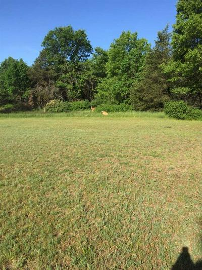 LOT 25 LANDCASTER ROAD, Plover, WI 54467 - Photo 1