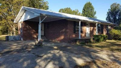 13625 CHURCH ST, ATWOOD, TN 38220 - Photo 2