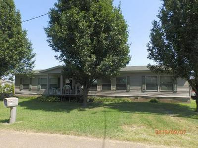 209 N BEATRIX ST, KENTON, TN 38233 - Photo 1