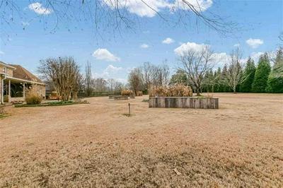 35 WILLOW GREEN DR, Jackson, TN 38305 - Photo 2