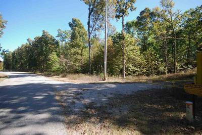 79 DIGGS RD, Pinson, TN 38366 - Photo 2